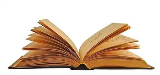 Književnost