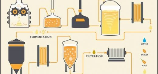 Postopek izdelave piva